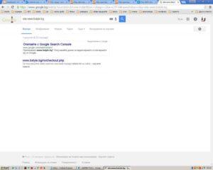 проверка за индексирани страници с www